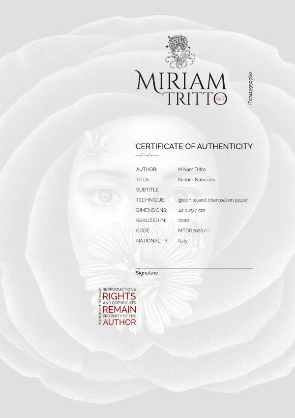 Certificato A4 da emettere Natura Naturans