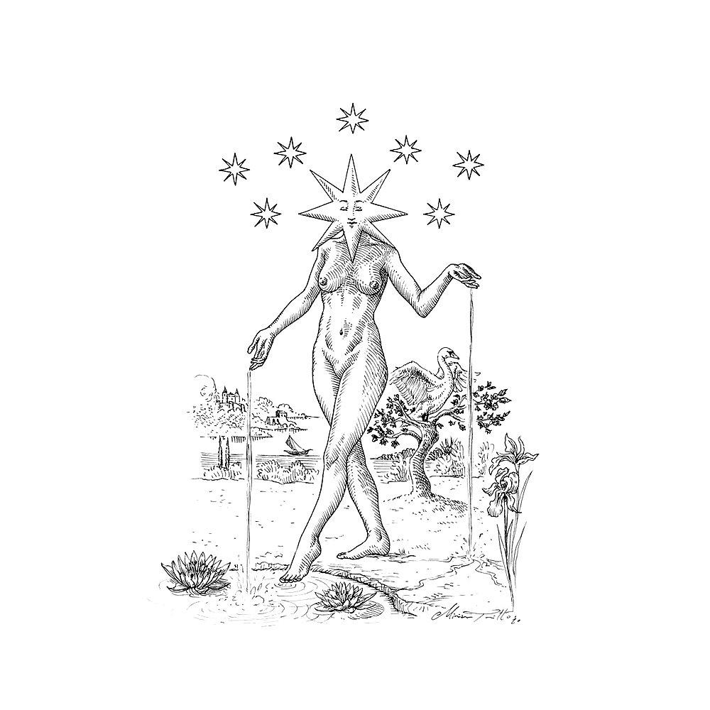 1000 1000 85 The Star Tarot illustration by Miriam Tritto