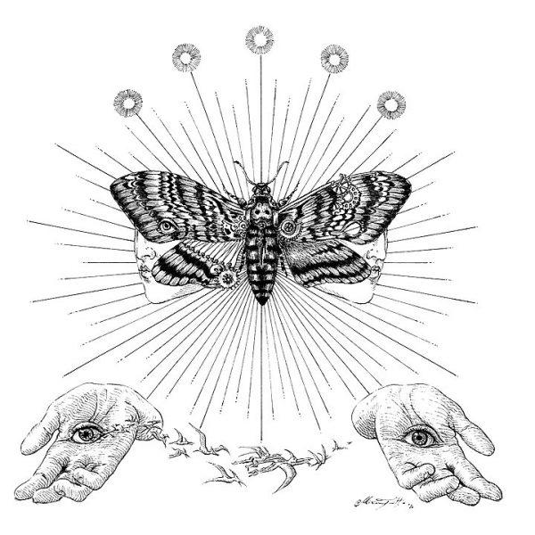 Miriam Tritto Onirica Acherontia ink illustration 720 II