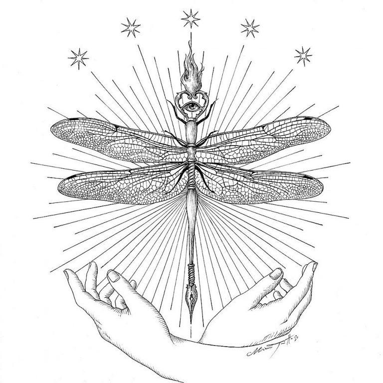 Miriam Tritto Onirica Odonata ink illustration 1000