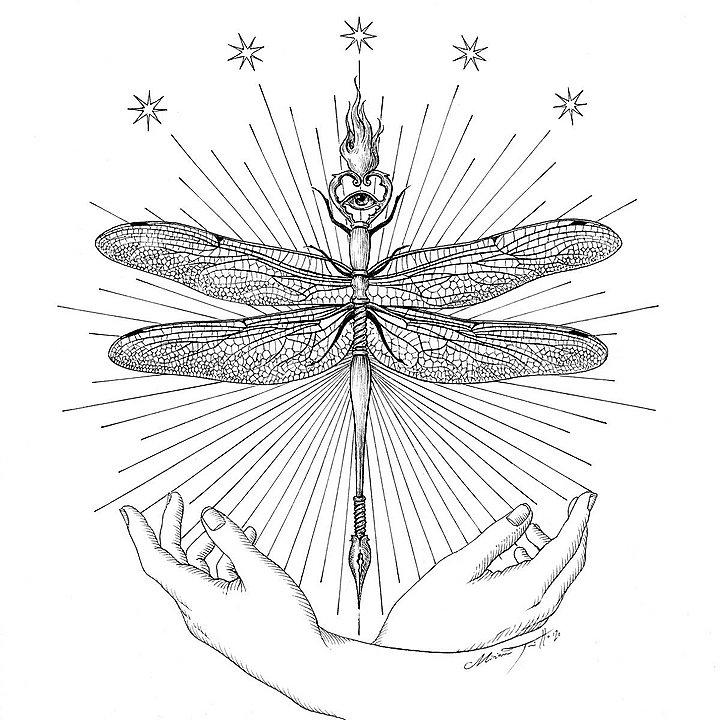 Miriam Tritto Onirica Odonata ink illustration 720